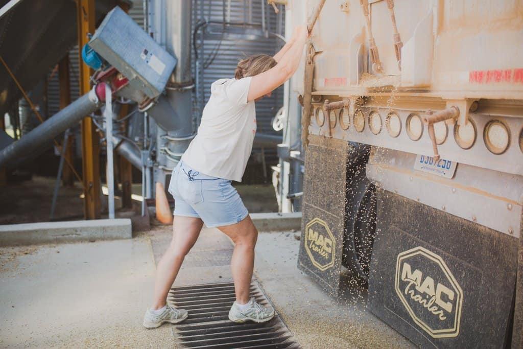 Farmer standing behind a semi-truck dumping rye grain