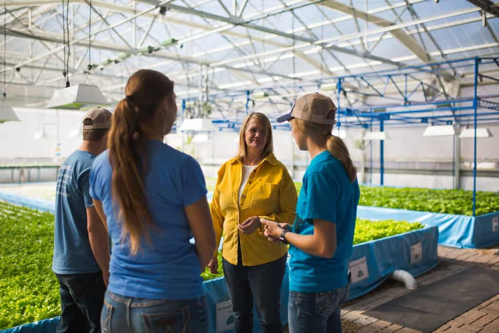 Farmers stand in a hydroponic greenhouse that is growing lettuce
