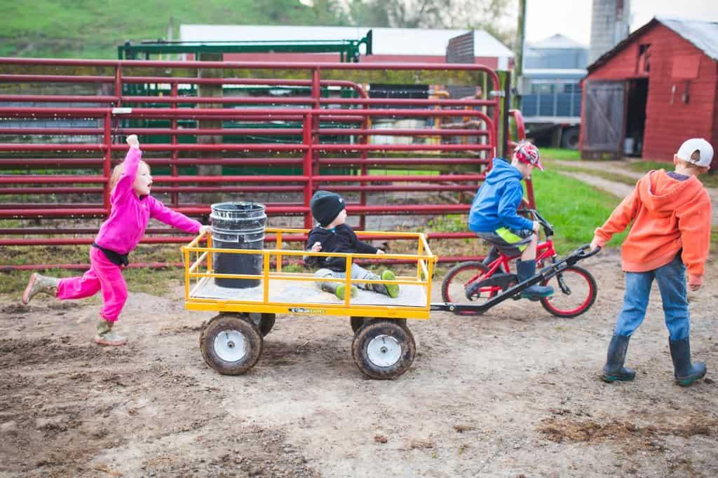 Wisconsin farm kids prepare to feed farm animals