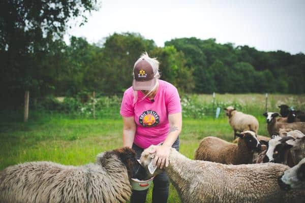 FarmHer Kriss Marion feeding her sheep at Circle M Market to Farm on her Florida farm