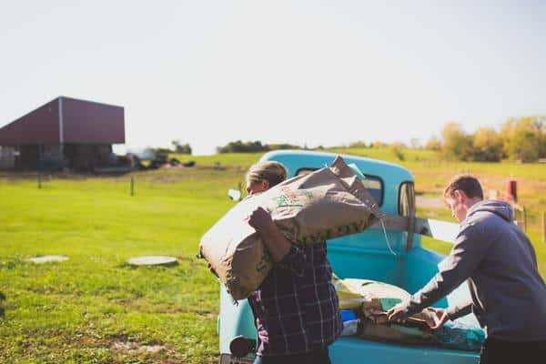 Farm workers carry feed sacks after unloading them from a Tiffany blue 1949 Chevy farm truck.