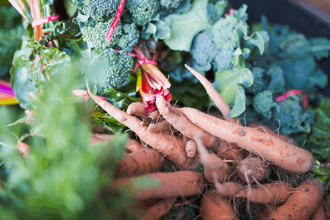 A crop of carrots and other vegetables that are grown at Pinnacle Farms in Arizona.