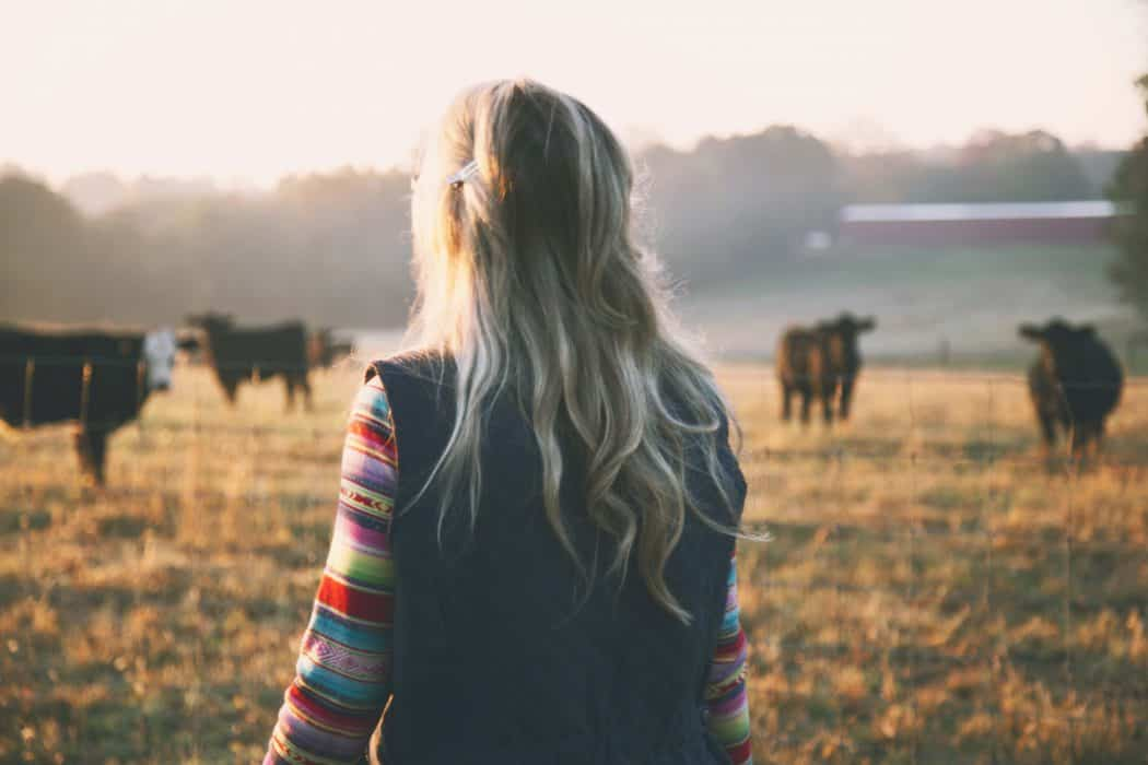 A FarmHer looks out over her field, assessing her cattle in the early morning light.