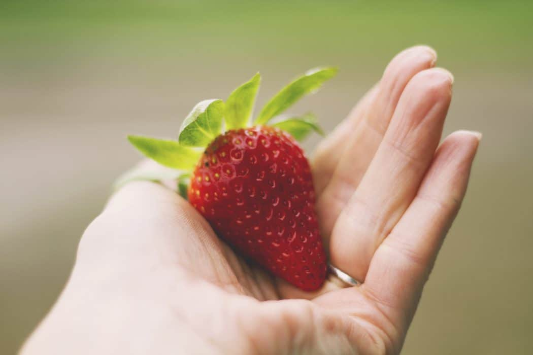 Woman's hand with wedding ring holding ripe strawberry.