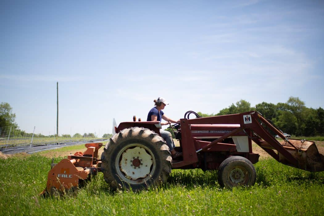 Woman driving International tractor through grass on agriculture farm.