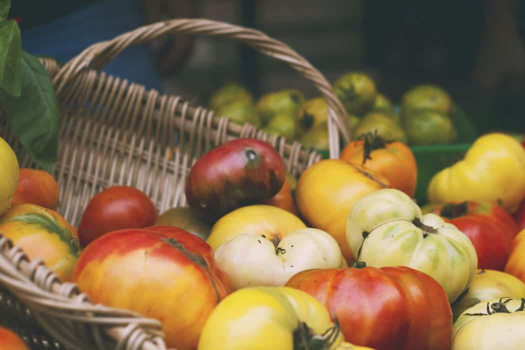 Brown basket of red, yellow, and white tomatoes for food bank donations.