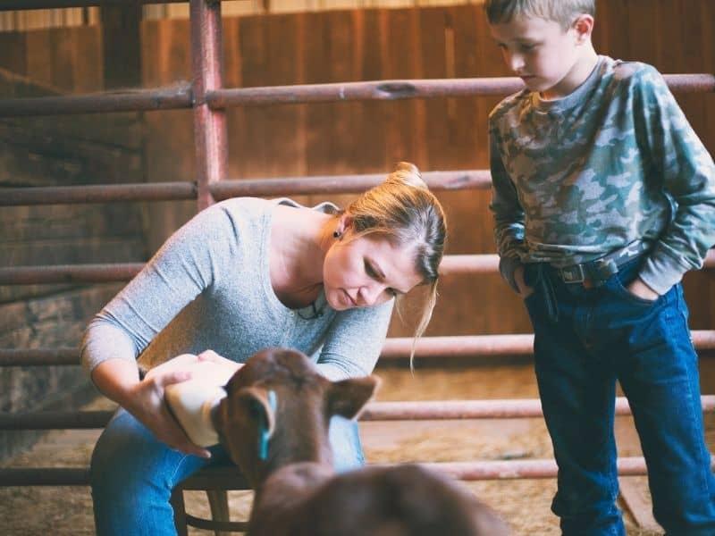 Meredith Benard feeding a bottle calf