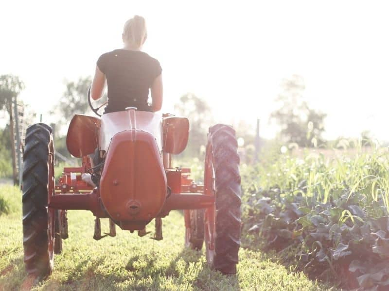Woman on red tractor in garden