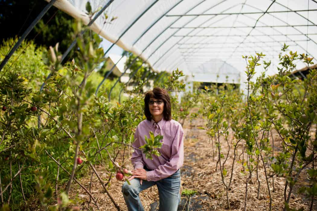 Deirdre Birmingham in her orchard on The Cider Farm in Wisconsin.