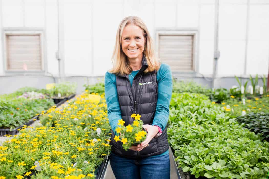 Liz Hunt, Head of Sustainable and Responsible Business for Syngenta holding yellow flowers in a greenhouse at Kansas State University.