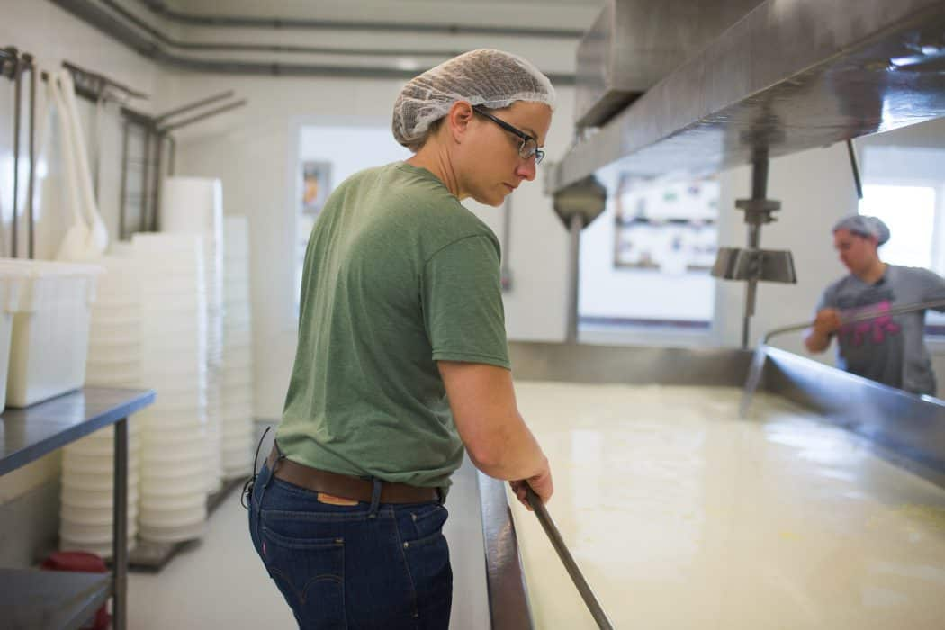 Woman separating cheese at the Marcoot Creamery.